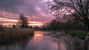 Winterse zonsondergang in Park Cronesteyn van