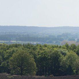 Panorama van de Veluwezoom richting Duitsland van Gerard de Zwaan