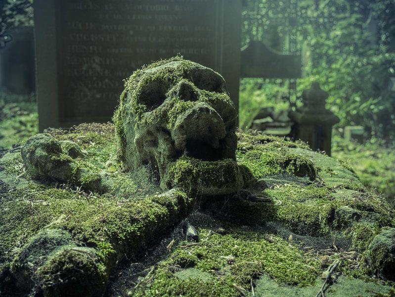 Oude graftombe met schedel, België van Art By Dominic