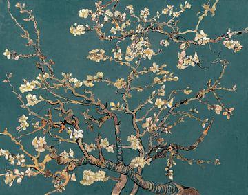 Mandelblüte von Vincent van Gogh (Teal)