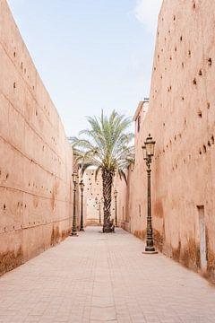 Palmboom in de Medina van Marrakech van Leonie Zaytoune