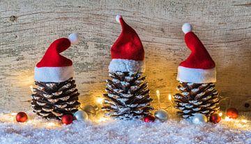 Kerstmis achtergrond met drie dennenappels versierd met kerstmutsen van Alex Winter