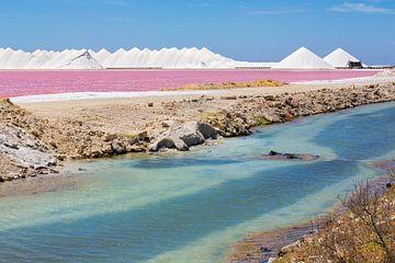 Landschap met roze zoutmeer en bergen zout op het eiland Bonaire van Ben Schonewille