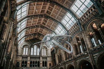 Galerie nationale - Londres ll sur Jordy Brada