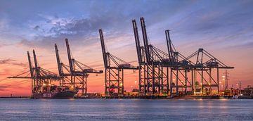 Containerterminal in blauw en rood gekleurde zonsondergang van Tony Vingerhoets