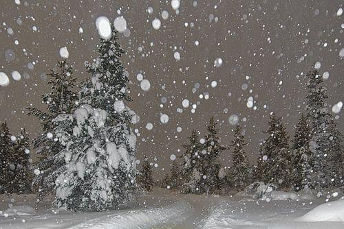 sneeuwstorm in de nacht.