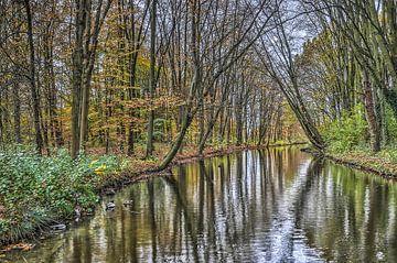 November in het Zuiderpark, Rotterdam van Frans Blok