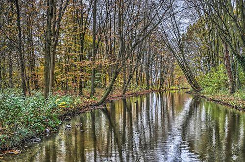 November in het Zuiderpark, Rotterdam