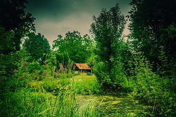 Alte Scheune im Garten am Teich von Patrick Dijkman