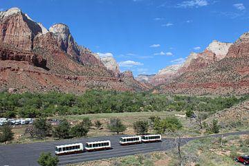 Zion Nationaal Park Verenigde Staten von Martin van den Berg Mandy Steehouwer