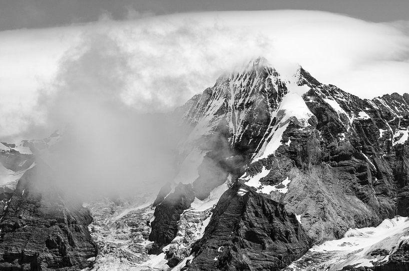 Mönch in zwart-wit van John Faber