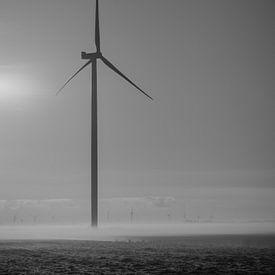 Moulin à vent avec brouillard sur Martijn Tilroe