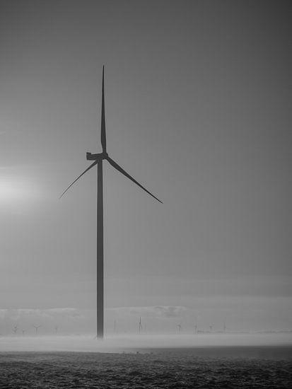 Windmühle mit Nebel