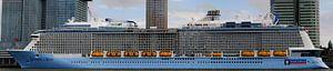Cruiseschip 'Ovation of the Seas' in Rotterdam   Panorama  von Willem van den Berge