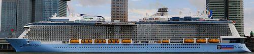 Cruiseschip 'Ovation of the Seas' in Rotterdam | Panorama
