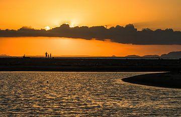 Eenzame zonsondergang aan de Stille Oceaan van Bep van Pelt- Verkuil
