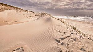 Dynamische kustvormen in het duinlandschap van eric van der eijk