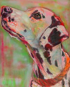 Dalmatiër van Liesbeth Serlie