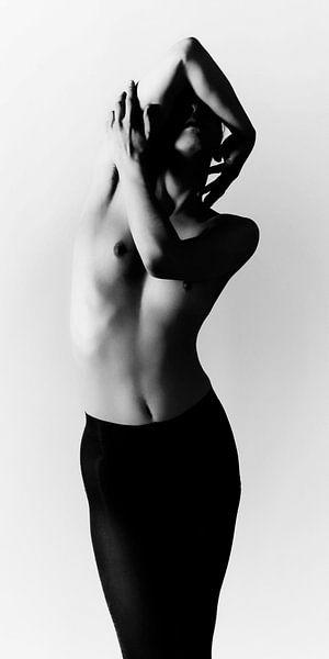 Art Nude Photography NO.3 van Falko Follert