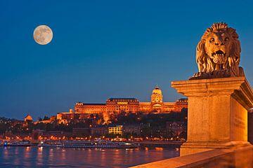 Buda Castle, Budapest, Hungary van