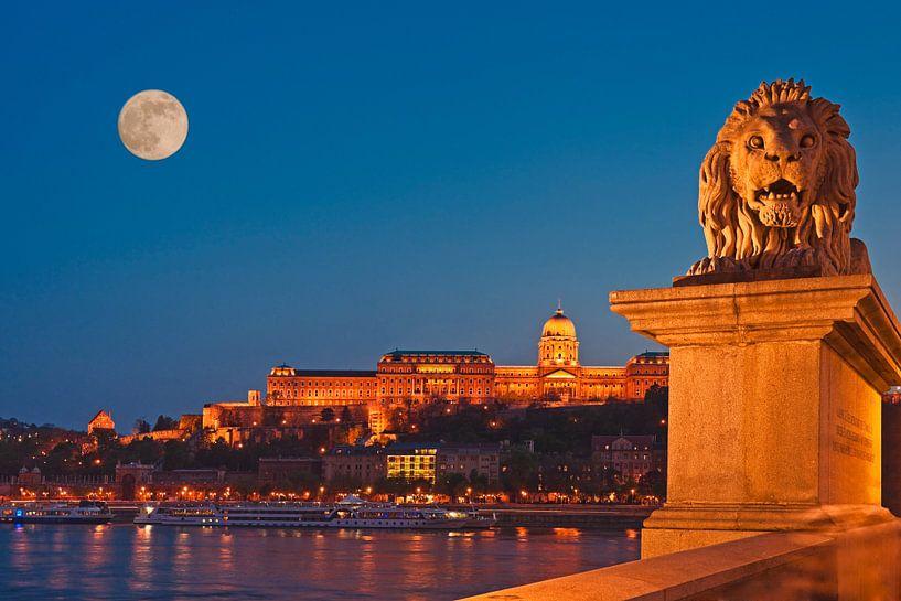 Buda Castle, Budapest, Hungary van Gunter Kirsch