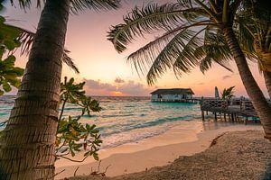 Palmenstrand am Morgen von Christian Klös
