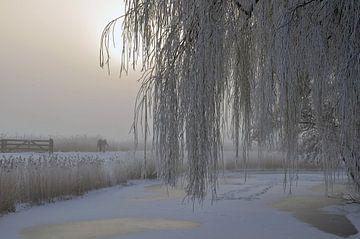 sneeuwlandschap van Corinne Alferink