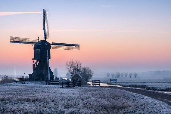 Cold Moring Kinderdijk