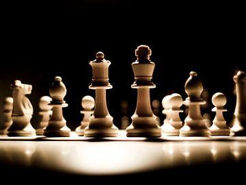 schaak in het spotlicht van Ilja Kalle