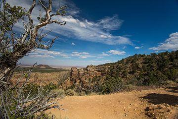 Grand Canyon South Rim von Hans Jansen