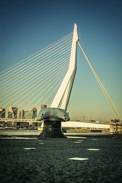 Erasmusbrug Rotterdam van Roland van Tilborg