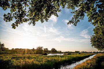 Goudse Hout // Gouda, Nederland van PHOTORIK