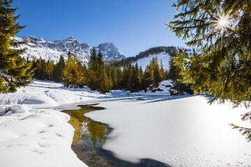 Vroege winter in de bergen van Coen Weesjes
