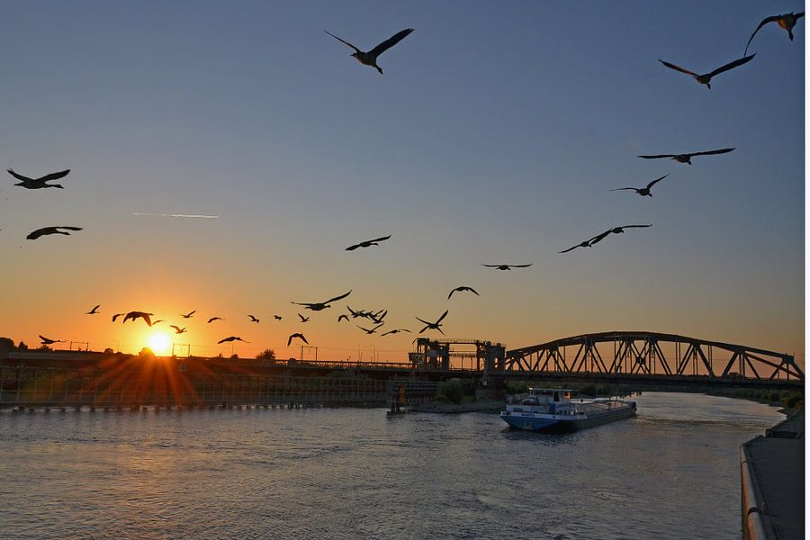 De IJssel bij zonsondergang