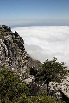 Tafelberg Kaapstad in de mist, Robbeneiland in de verte van