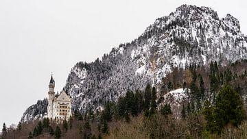 Schloss Neuschwanstein im Winter, Deutschland von Jessica Lokker
