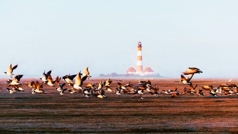 Leuchtturm von Westerhever von Heiko Westphalen