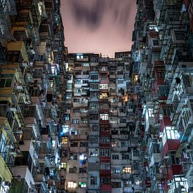 Hongkong hive two von Remco van Adrichem