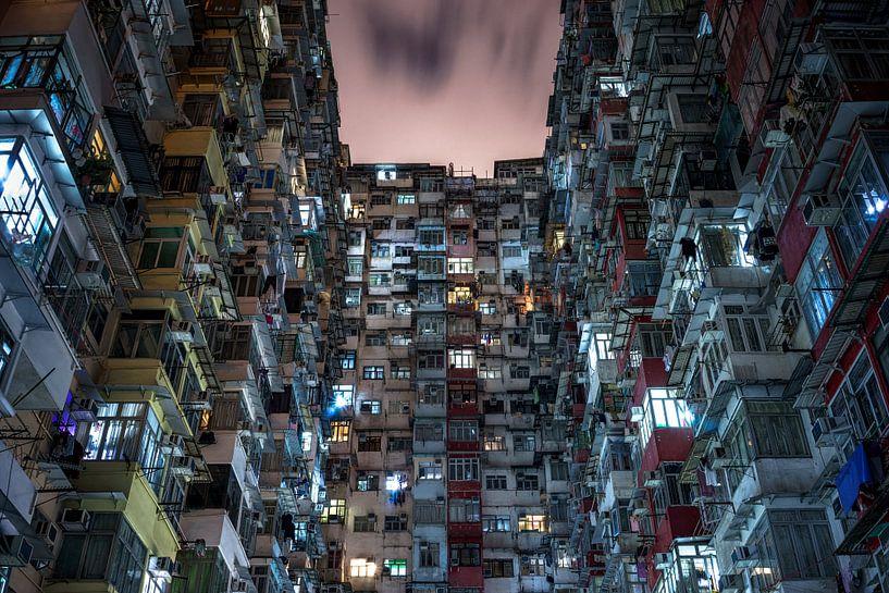 Hongkong hive two van Remco van Adrichem