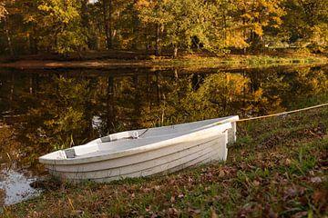 bootjes in het water tijdens de herfst met herfstkleuren op de achtergrond