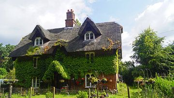 Met lianen bedekt huis op het pad in Suffolk van Babetts Bildergalerie