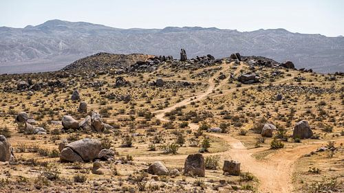 landschap in Californië van