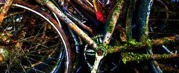 Unterwasser-Fahrrad von Frans Jonker