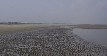 Strand zandrillen van Ad Steenbergen