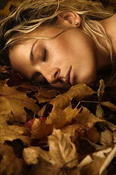 Herbstliches Beauty Portrait von Silvio Schoisswohl