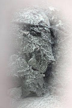 Pareidolie in zand van Erik Stekelenburg