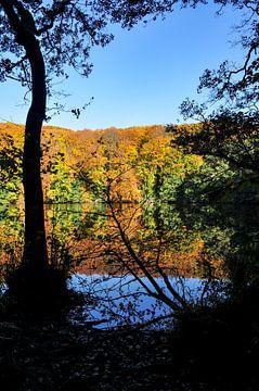 Het Herta-meer in het Jasmund National Park van GH Foto & Artdesign