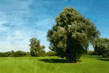Landschap bij 's Hertogenbosch von Peter Baak