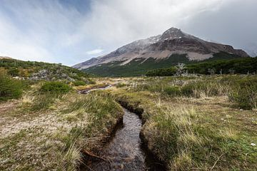 Landschaft des Nationalparks Los Glaciares in Argentinien. von OCEANVOLTA