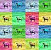 Kleurrijke vierkanten met stieren. van Edith van Aken thumbnail